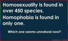 homophobia-poster