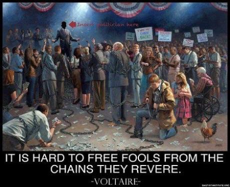 free-fools